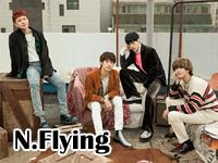 nflying.jpg