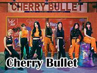 cherry bullet.jpg