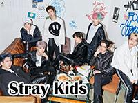 stray kids.jpg