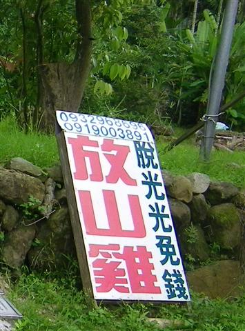 華山山區-放山雞.jpg