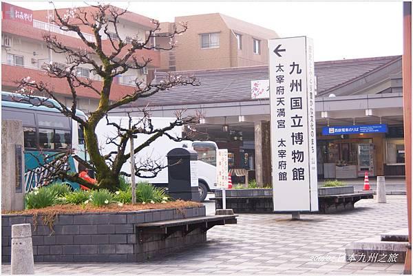 九州DSC00002.JPG