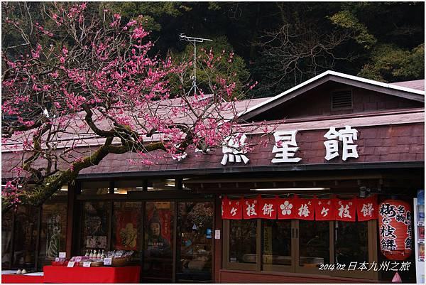 九州DSC00034.JPG