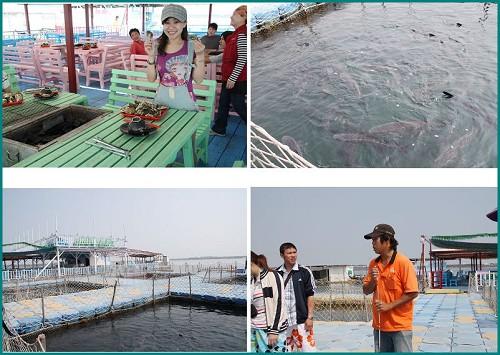 澎湖 海洋牧場3.jpg