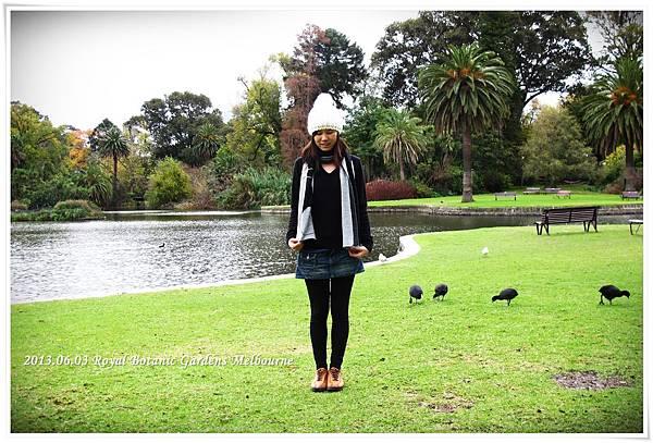 2013.06.03 (16) Royal Botanic Gardens Melbourne