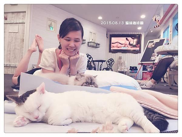 2015.08.13 (2) 貓咪咖啡廳.JPG