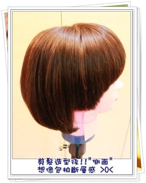 剪髮後(側面)1