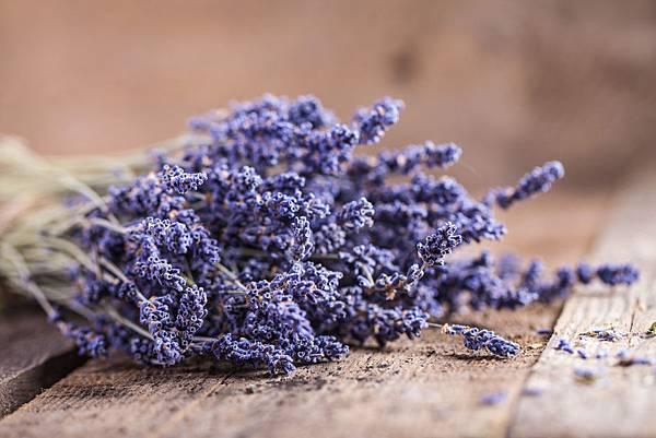 ban-si-hoa-lavender-hcm-11.jpg