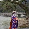 巧遇日本藝妓