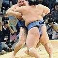 20101121 蒙古關脇鶴竜 三連敗.jpg