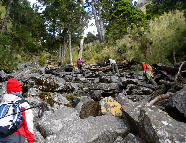040_DSC00368_taylor_C_玉山前峰的路是由很多大石頭組合成的,不知這麼多的石頭是從哪來的.JPG