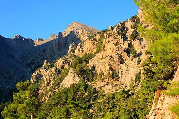02_MG_8505_C2_步道起點可以看到前方的山與藍天,進去不到後就看不到了.JPG