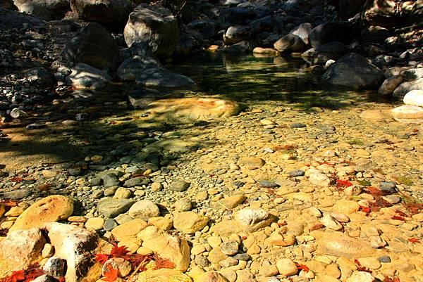 11_MG_8561_C2_水池的石頭.JPG