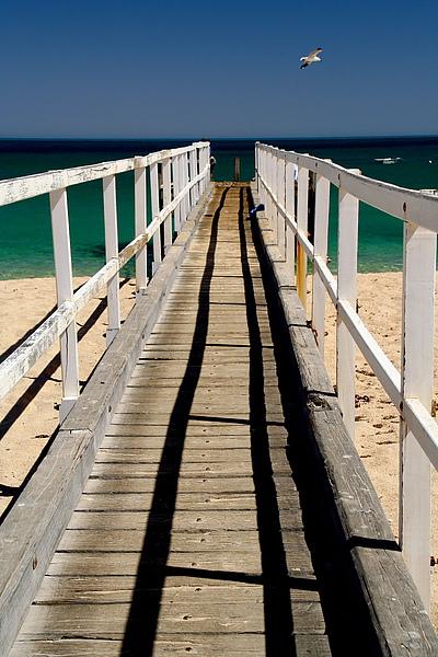 072_IMG_3725_Northern_Ningaloo_Reef橋,海鳥,藍天與光影.JPG