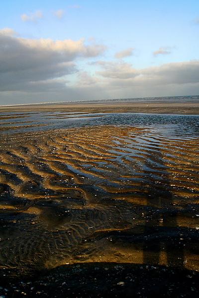 053_IMG_4157_Eight_Mile_Beach80哩海灘,這裡晚上和清晨可以看到小海龜游回大海.JPG