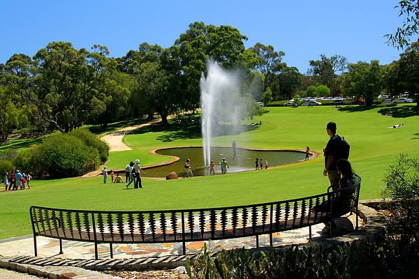 002_IMG_3028_Perth_kings park_伯斯國王公園.JPG