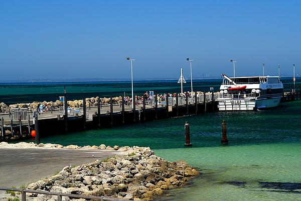 030_IMG_3249_Rottnext_Island港口,伯斯人最愛的渡假小島.JPG
