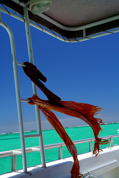 059_IMG_3615_Ningaloo_Reef尋訪寧格魯礁.JPG