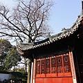 014_MG_3221_C_上海豫園一角.JPG