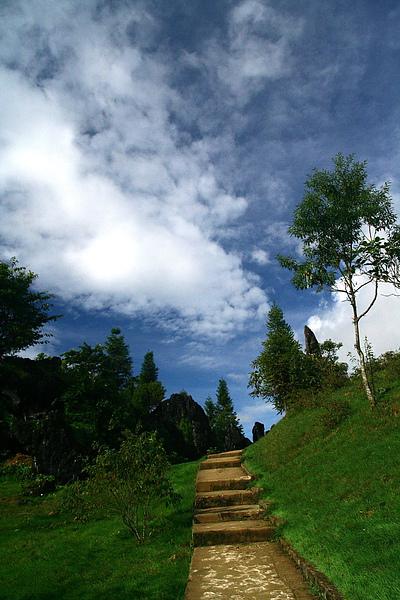 021_IMG_9899_Sapa_沙霸Ham Rong Mt. 的 rock forest.JPG