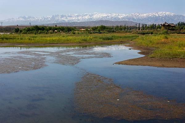 008_MG_9479_C_嘉峪關城外的沼澤,後面是祁連山.JPG
