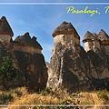 040_MG_7737_C2_卡帕多基亞的巴夏倍的奇岩造型特殊,這裡又稱為仙人煙囪.JPG