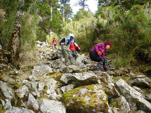 043_DSC00377_taylor_C_玉山前峰的路要手腳並用,雖然只有800公尺,還是挺磨人的.JPG