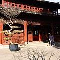 006_MG_3197_C_上海豫園.JPG