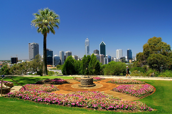 011_IMG_2998_Perth_kings park伯斯國王公園.JPG