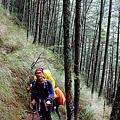 006_MG_1110_C_七公里的林道很快就走完了,開始往上爬,Martin也為這次的活動很忙碌.JPG