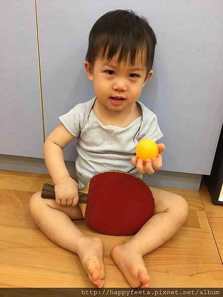 0828 乒乒乓乓_4.jpg