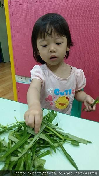 我會幫忙折菜菜_20.jpg