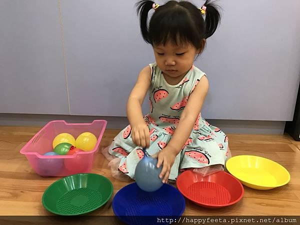 大🐘班-水球顏色分類_11.jpg