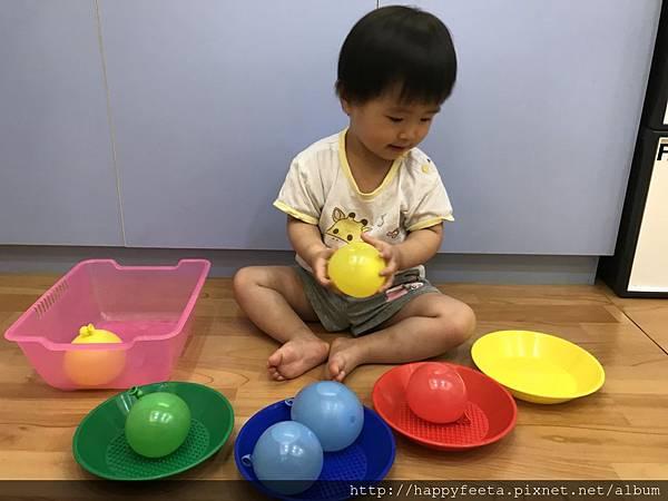 大🐘班-水球顏色分類_8.jpg