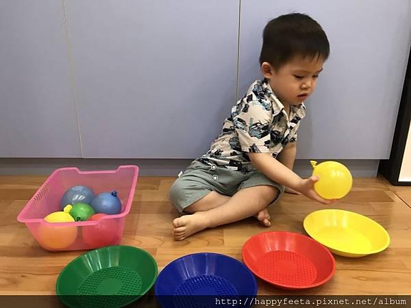 大🐘班-水球顏色分類_18.jpg