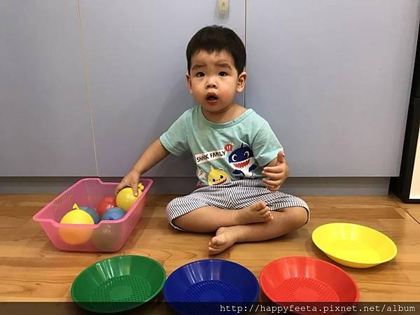 大🐘班-水球顏色分類_36.jpg
