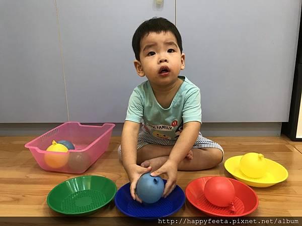 大🐘班-水球顏色分類_39.jpg