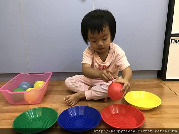 大🐘班-水球顏色分類_42.jpg