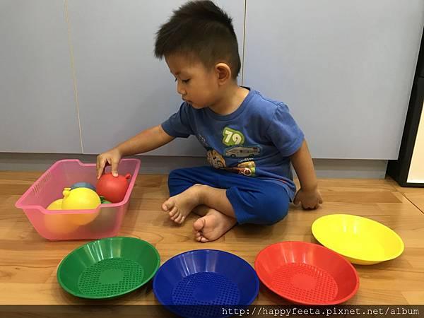大🐘班-水球顏色分類_54.jpg