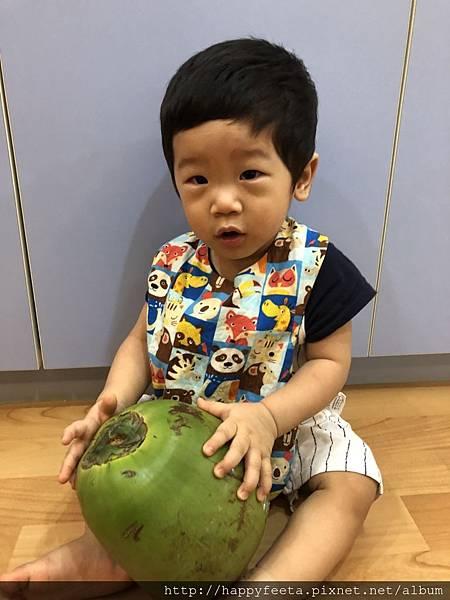 河馬。大大的椰子_30.jpg