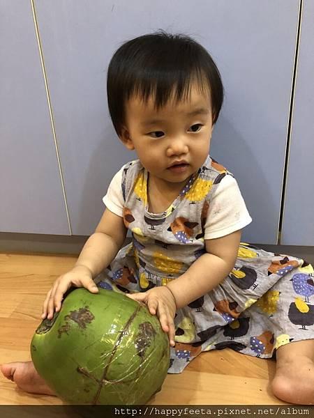 河馬。大大的椰子_37.jpg