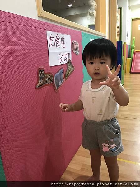 大🐘班-動物吃什麼_180810_0037.jpg