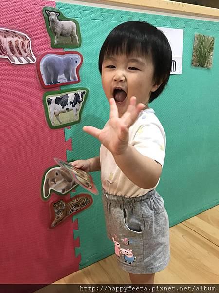 大🐘班-動物吃什麼_180810_0043.jpg