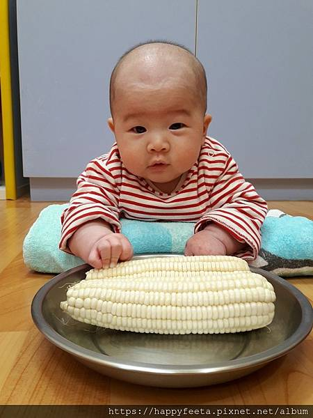 白🐰班~摸摸白玉米_190102_0003.jpg