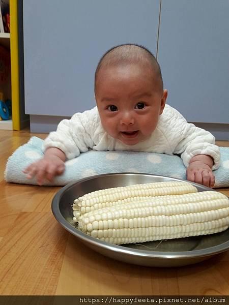 白🐰班~摸摸白玉米_190102_0015.jpg