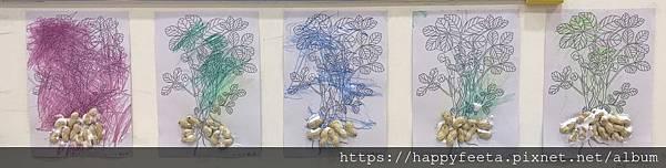 大象班-我的花生樹_190523_0000.jpg