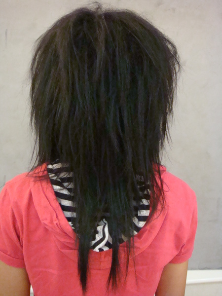 鄭婷真 玉米鬚長髮3