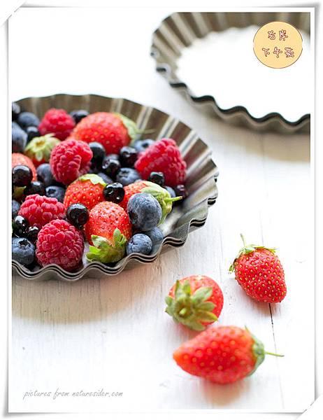 好吃的野莓派