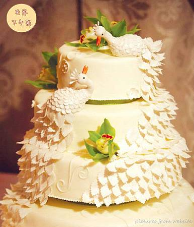 cake-cake-couture_副本