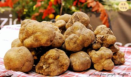 italian-food-excellence-truffles_副本