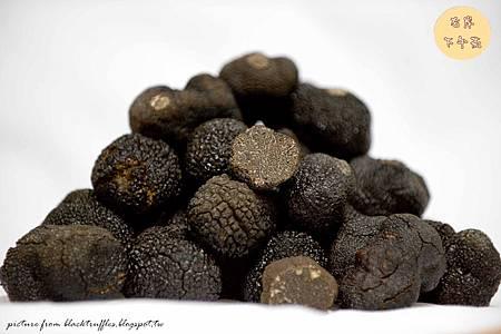 black_truffle_tuber_melanosporum.3_副本